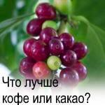 кофе или какао